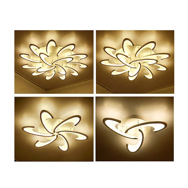 Đèn ốp trần trang trí - VN - DT - 1232
